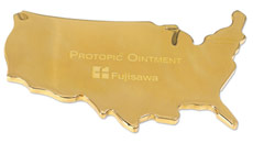 U.S. Map Paperweight - Gold